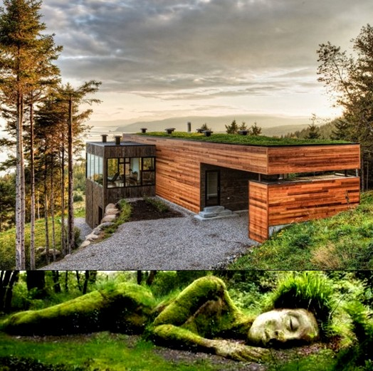 Architettura Organica Fiorinmaurizio