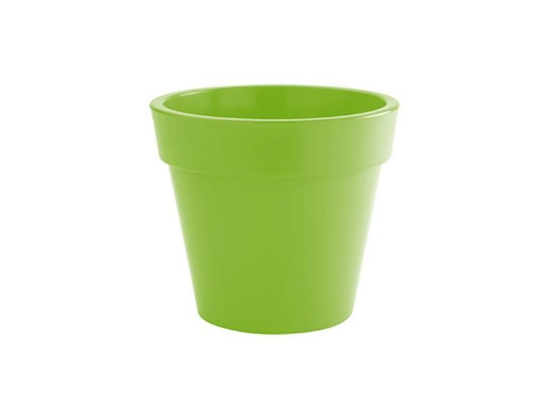 vaso nicoli zeus