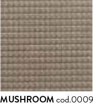 mushroom-0009